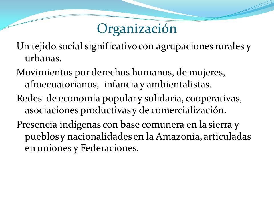 Organización Un tejido social significativo con agrupaciones rurales y urbanas.