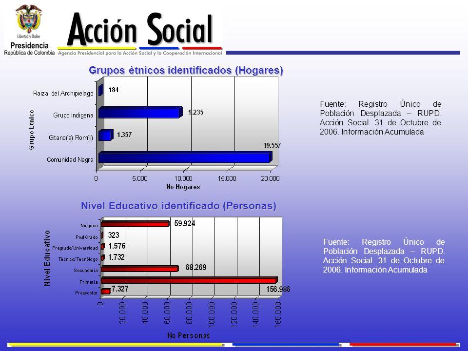 Grupos étnicos identificados (Hogares)