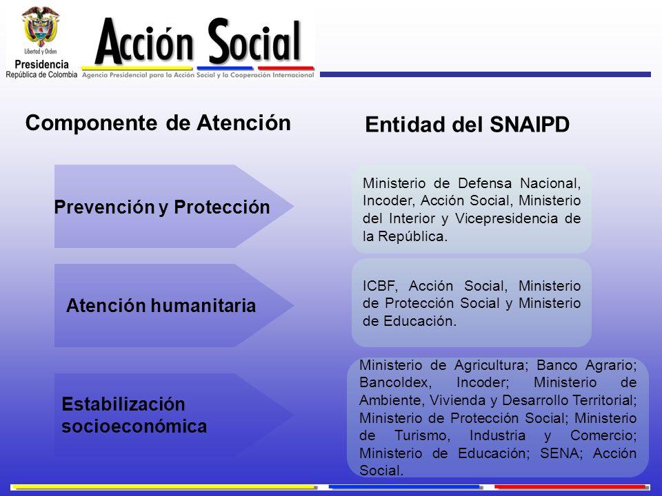 Componente de Atención Prevención y Protección