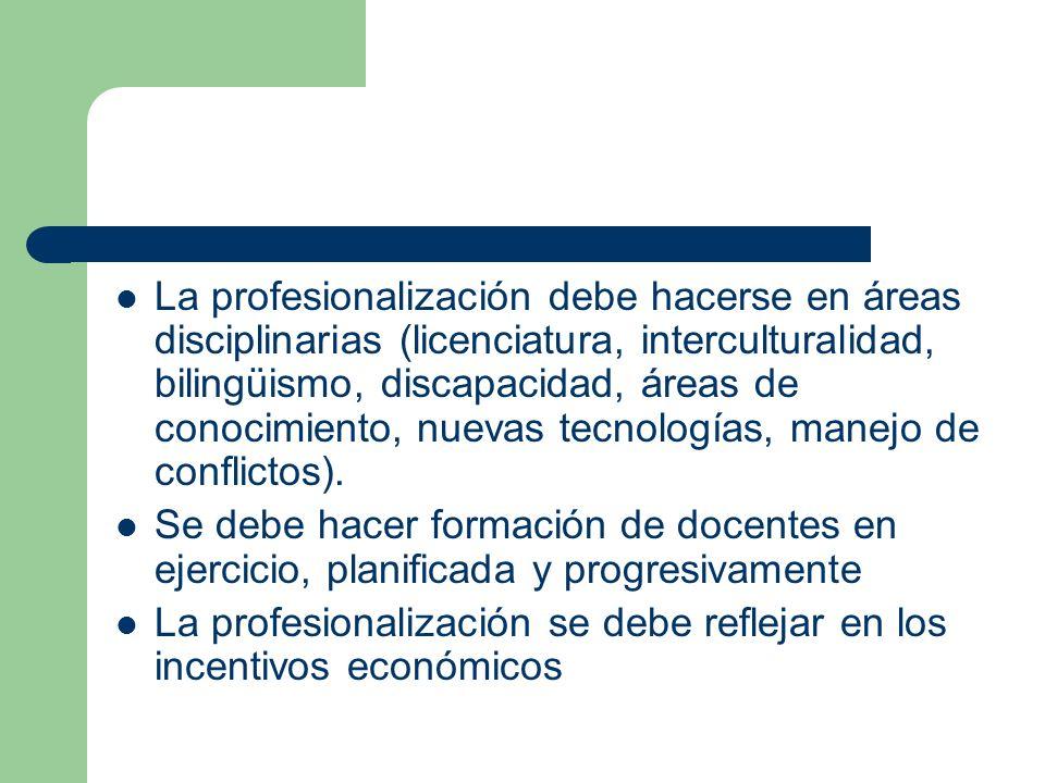 La profesionalización debe hacerse en áreas disciplinarias (licenciatura, interculturalidad, bilingüismo, discapacidad, áreas de conocimiento, nuevas tecnologías, manejo de conflictos).