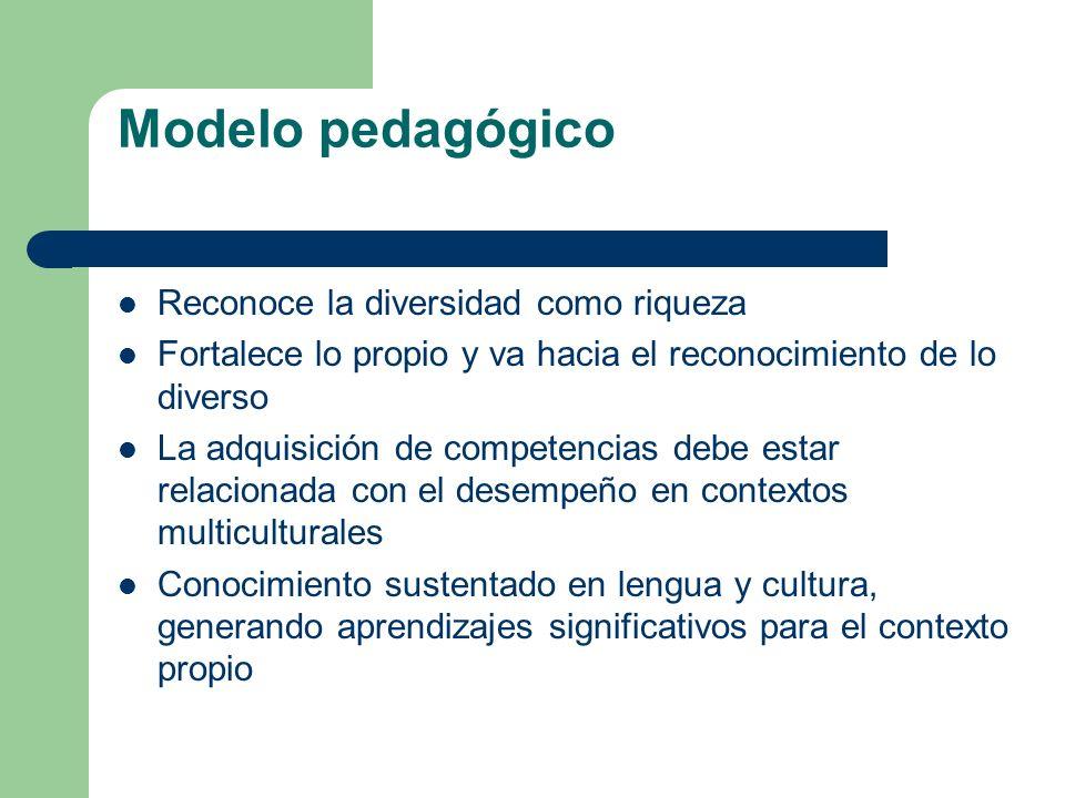 Modelo pedagógico Reconoce la diversidad como riqueza