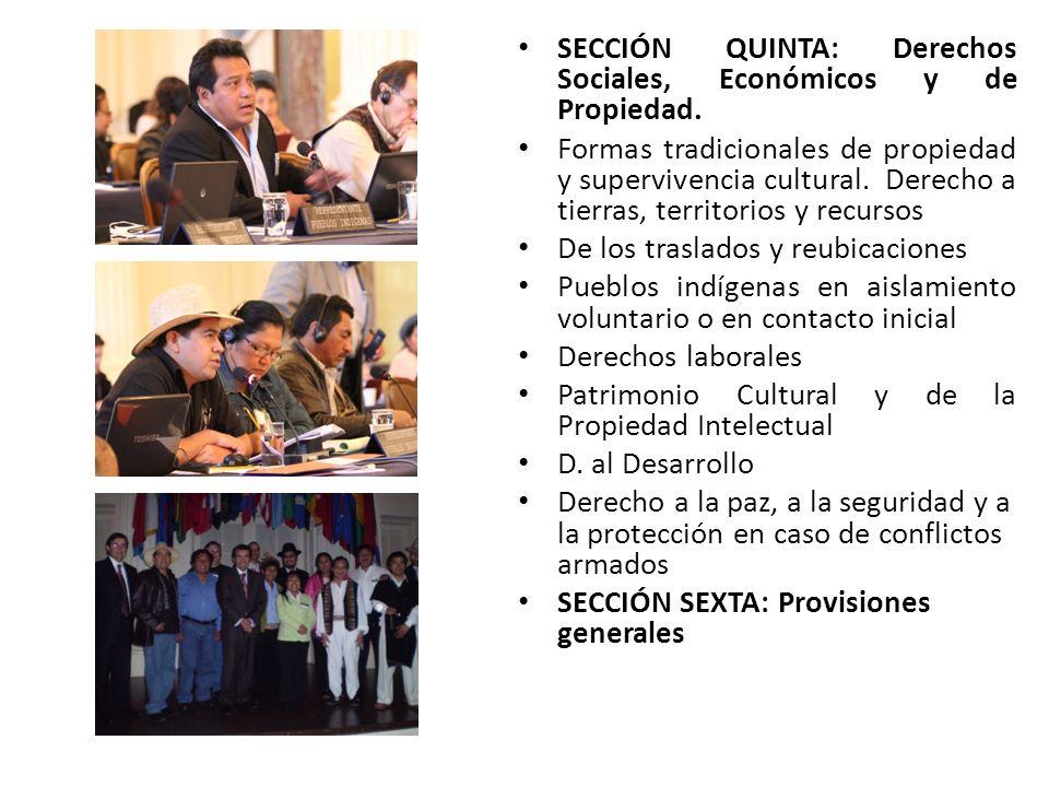 SECCIÓN QUINTA: Derechos Sociales, Económicos y de Propiedad.
