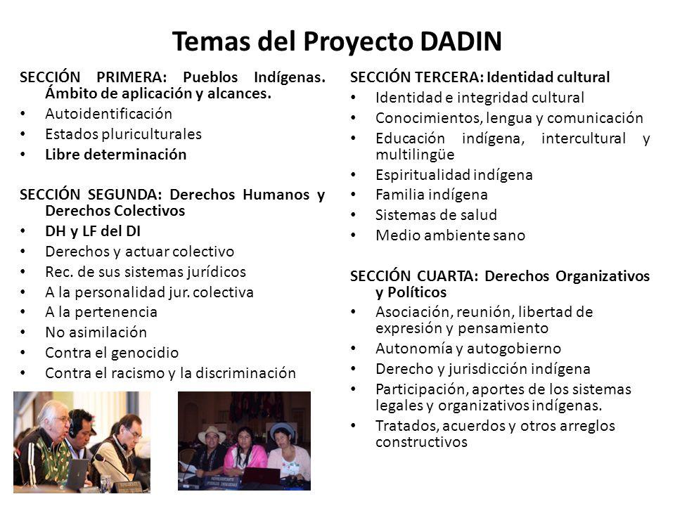 Temas del Proyecto DADIN