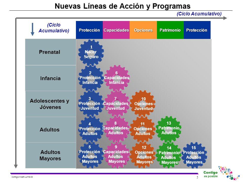 Nuevas Líneas de Acción y Programas