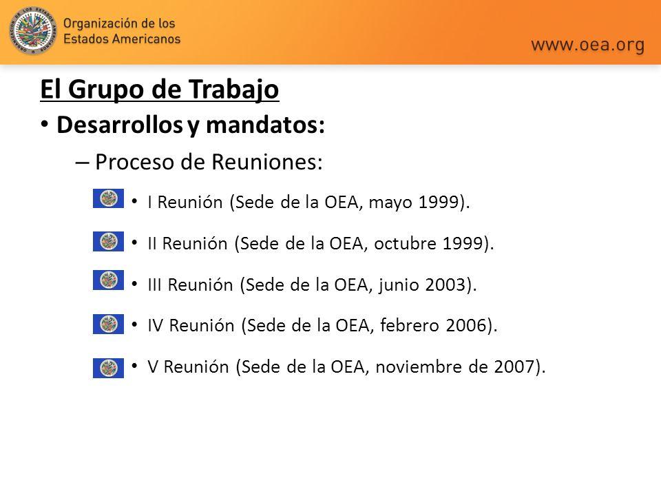 El Grupo de Trabajo Desarrollos y mandatos: Proceso de Reuniones: