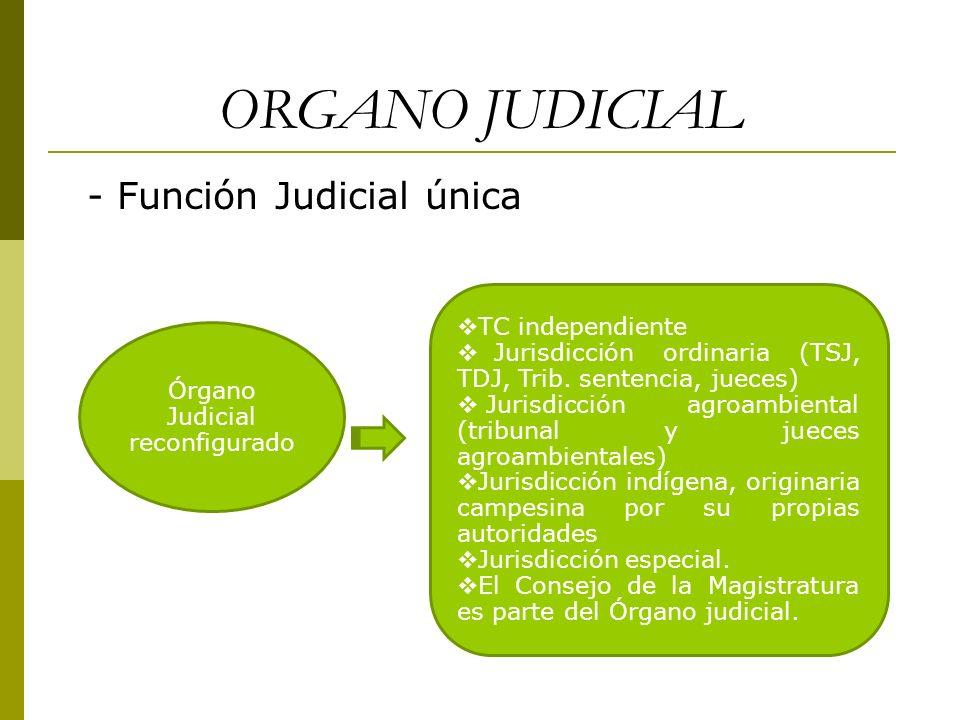Órgano Judicial reconfigurado