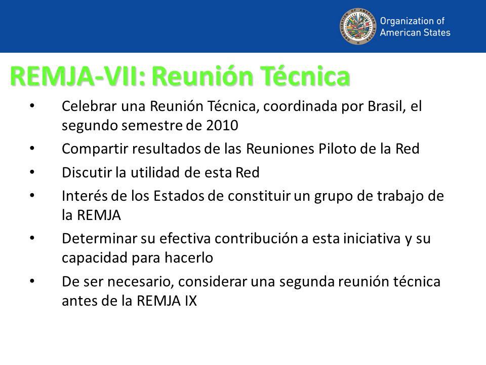 REMJA-VII: Reunión Técnica