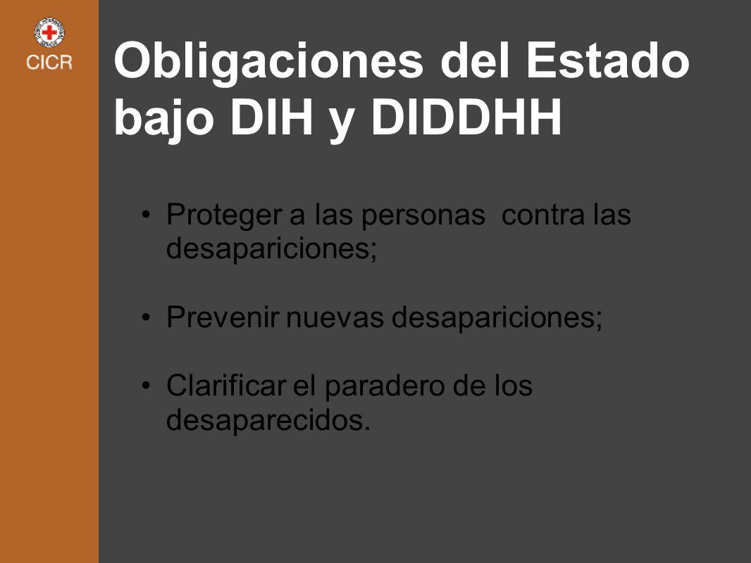Obligaciones del Estado bajo DIH y DIDDHH