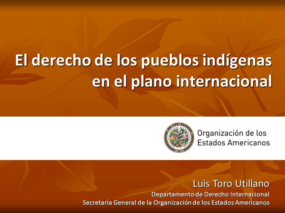 El derecho de los pueblos indígenas en el plano internacional