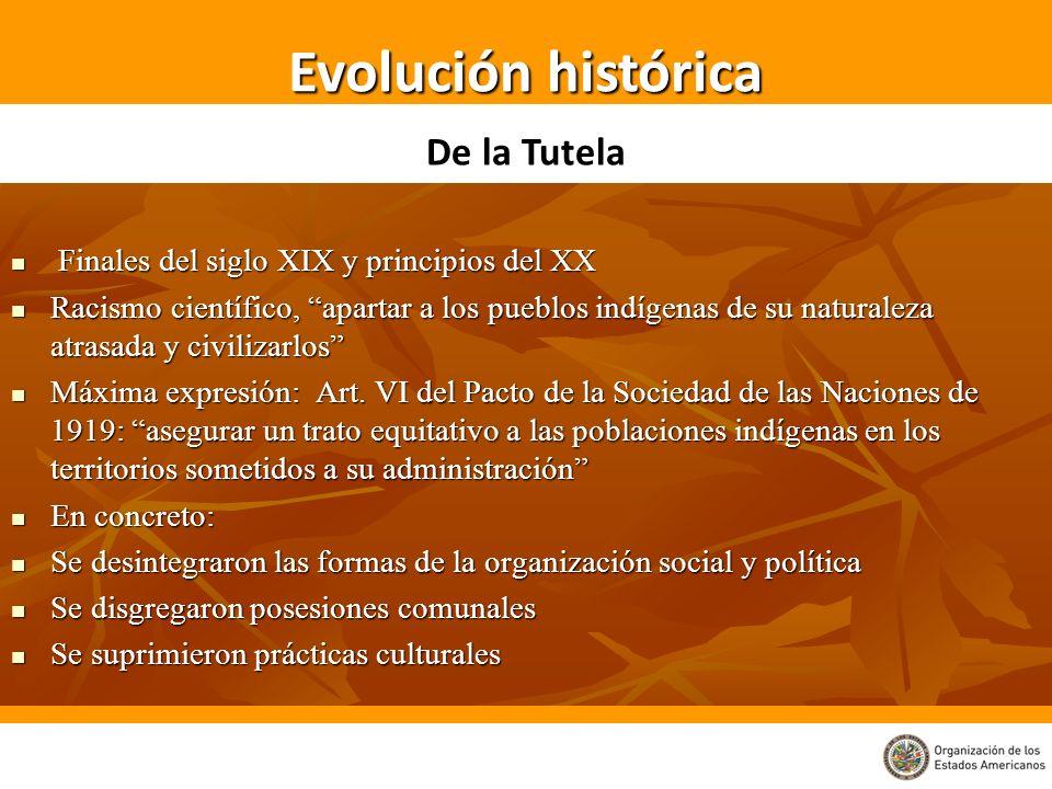 Evolución histórica De la Tutela
