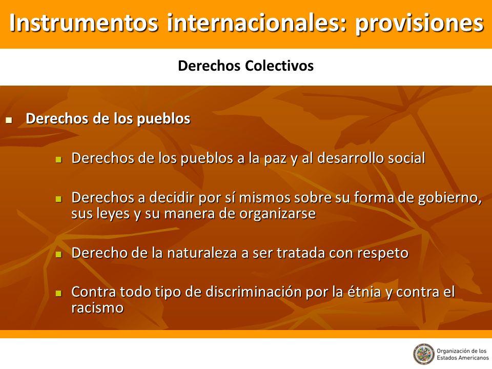 Instrumentos internacionales: provisiones