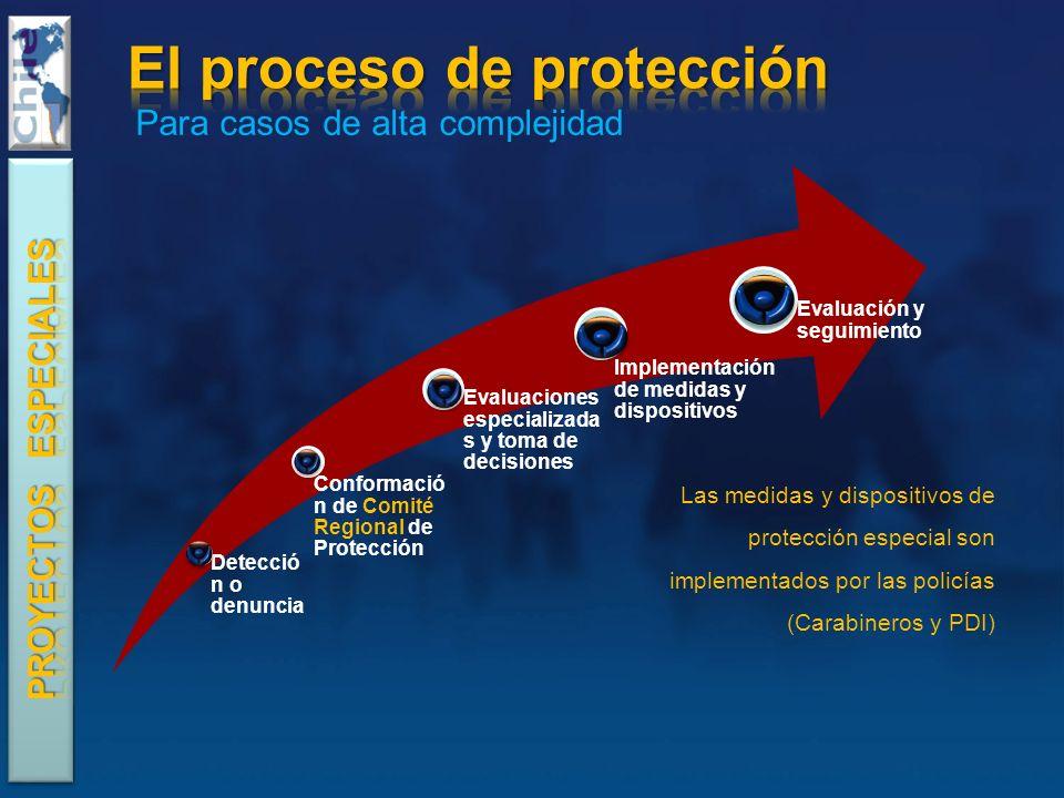 El proceso de protección