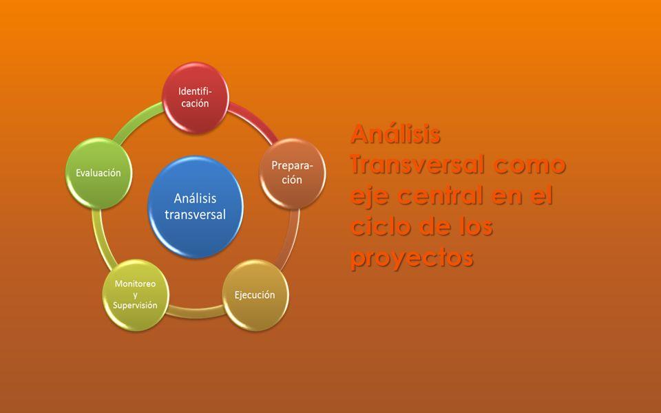 Análisis Transversal como eje central en el ciclo de los proyectos