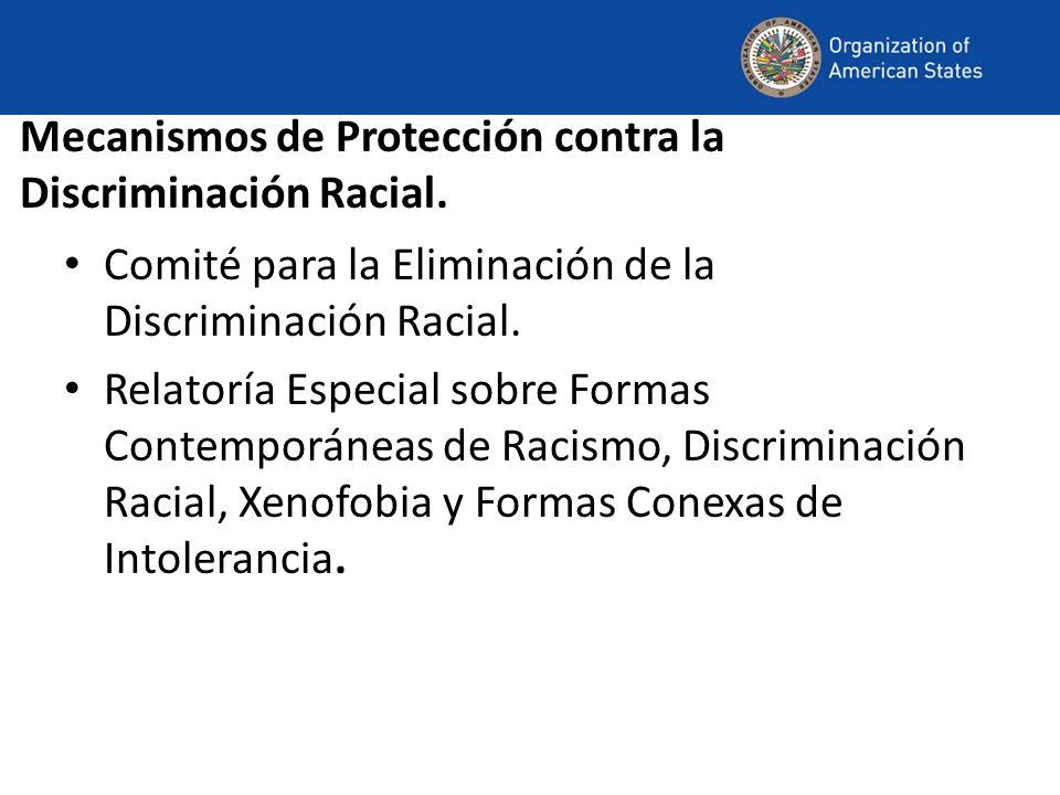 Mecanismos de Protección contra la Discriminación Racial.
