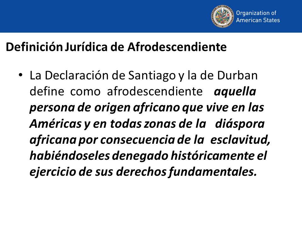 Definición Jurídica de Afrodescendiente