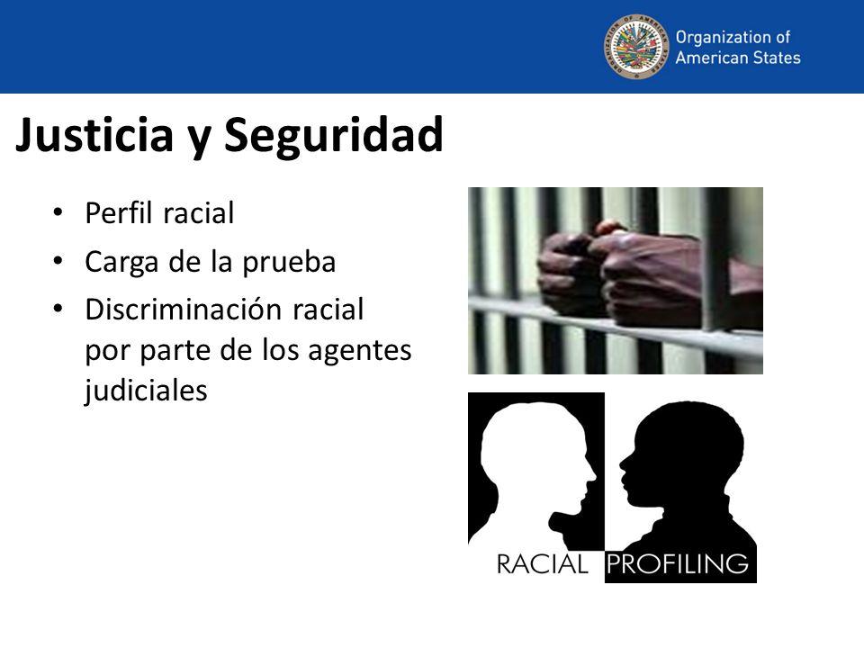 Justicia y Seguridad Perfil racial Carga de la prueba