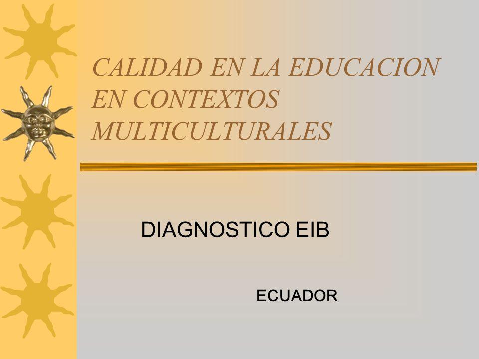 CALIDAD EN LA EDUCACION EN CONTEXTOS MULTICULTURALES
