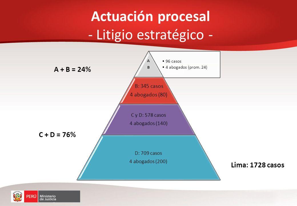 Actuación procesal - Litigio estratégico -