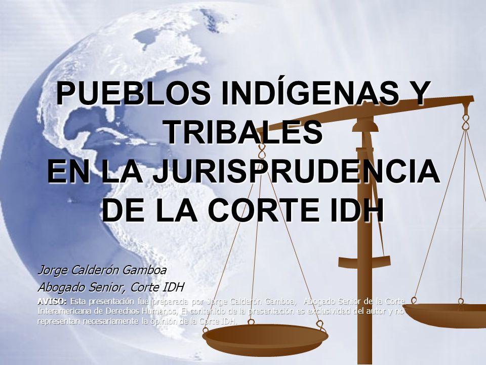 PUEBLOS INDÍGENAS Y TRIBALES EN LA JURISPRUDENCIA DE LA CORTE IDH