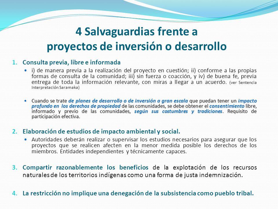 4 Salvaguardias frente a proyectos de inversión o desarrollo
