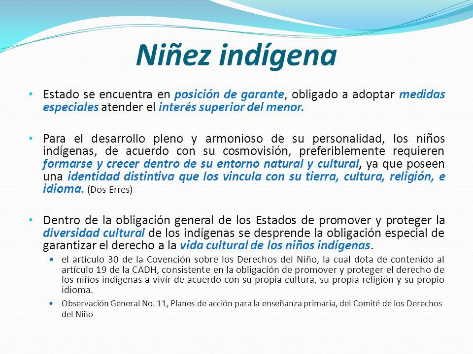 Niñez indígena Estado se encuentra en posición de garante, obligado a adoptar medidas especiales atender el interés superior del menor.