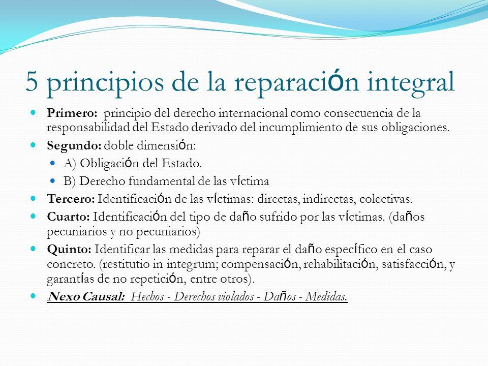 5 principios de la reparación integral
