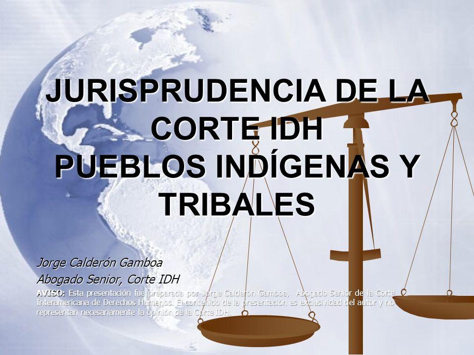 JURISPRUDENCIA DE LA CORTE IDH PUEBLOS INDÍGENAS Y TRIBALES
