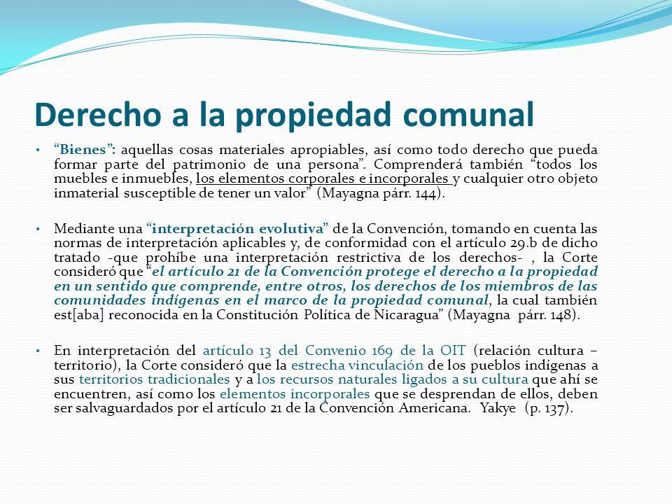 Derecho a la propiedad comunal