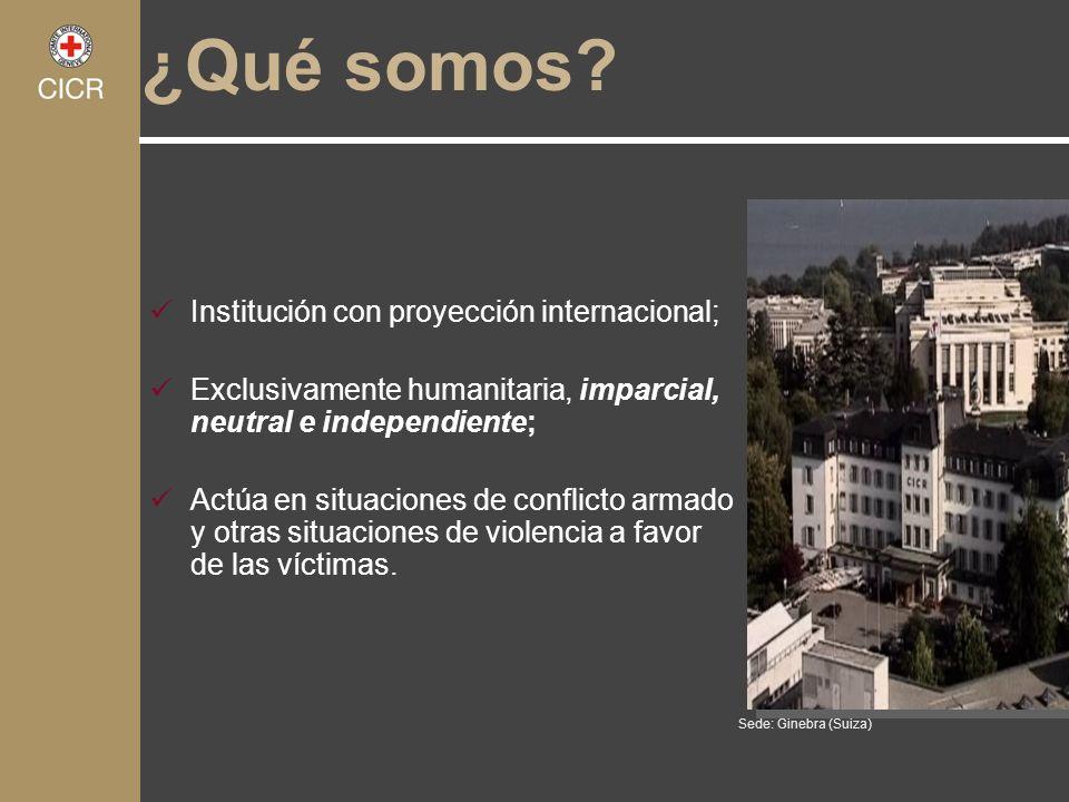 ¿Qué somos Institución con proyección internacional;