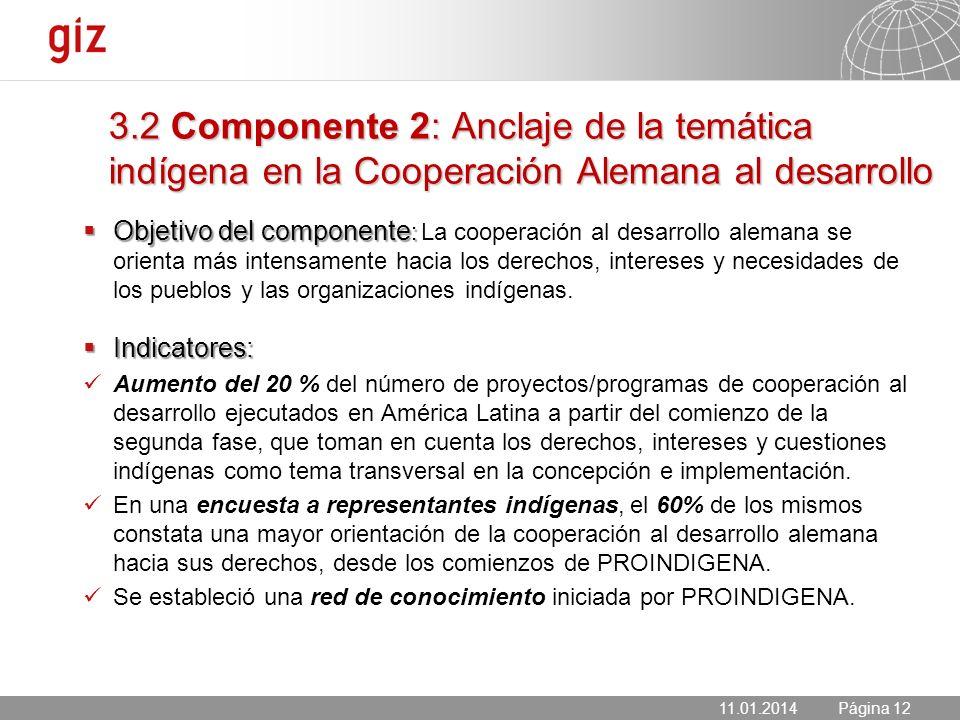 3.2 Componente 2: Anclaje de la temática indígena en la Cooperación Alemana al desarrollo