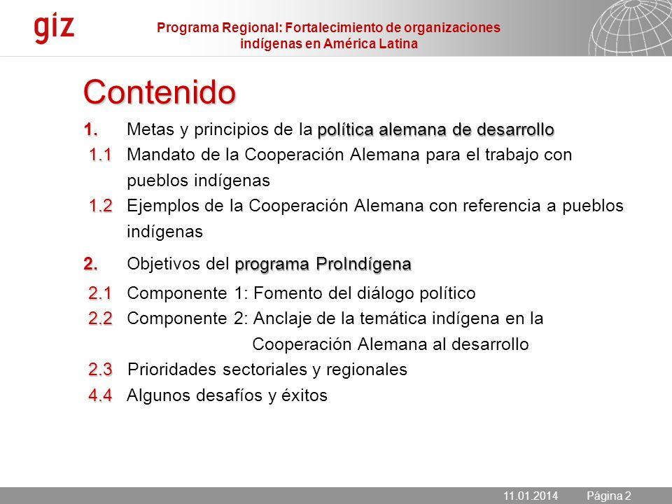 Programa Regional: Fortalecimiento de organizaciones