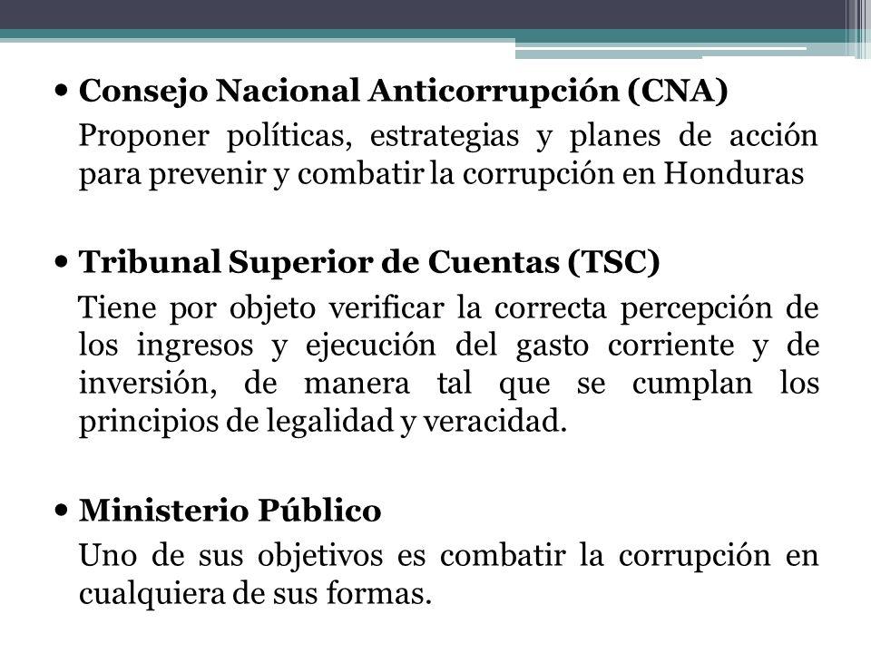 Consejo Nacional Anticorrupción (CNA)