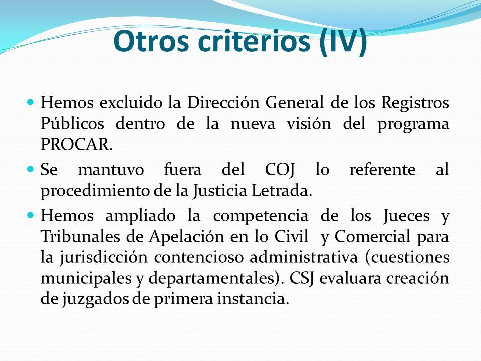 Otros criterios (IV) Hemos excluido la Dirección General de los Registros Públicos dentro de la nueva visión del programa PROCAR.