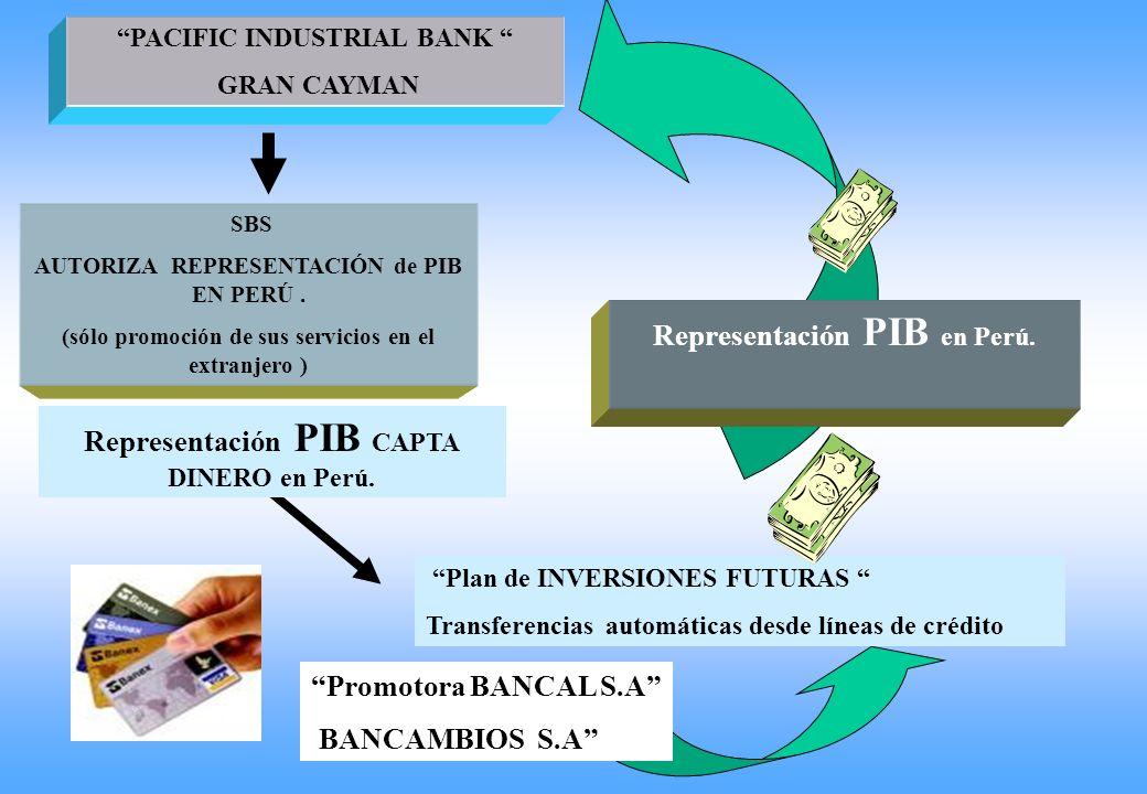 Representación PIB en Perú. Representación PIB CAPTA DINERO en Perú.