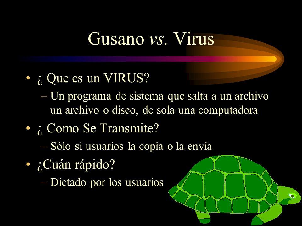 Gusano vs. Virus ¿ Que es un VIRUS ¿ Como Se Transmite ¿Cuán rápido