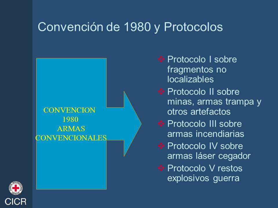 Convención de 1980 y Protocolos