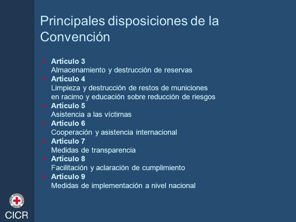 Principales disposiciones de la Convención