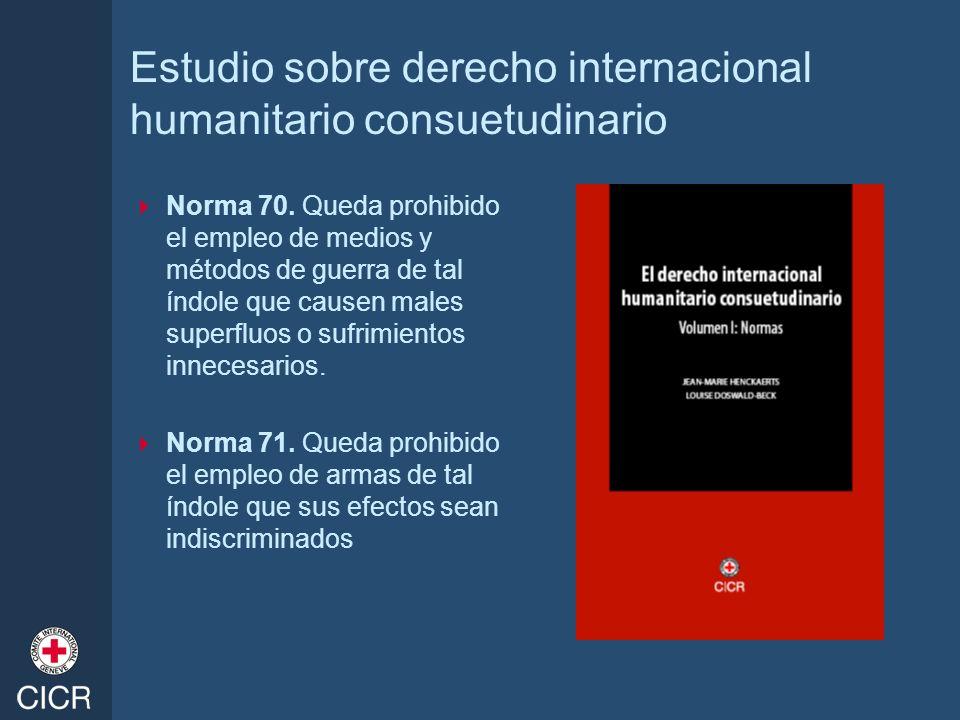 Estudio sobre derecho internacional humanitario consuetudinario