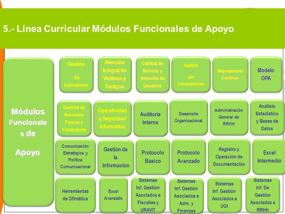 5.- Línea Curricular Módulos Funcionales de Apoyo