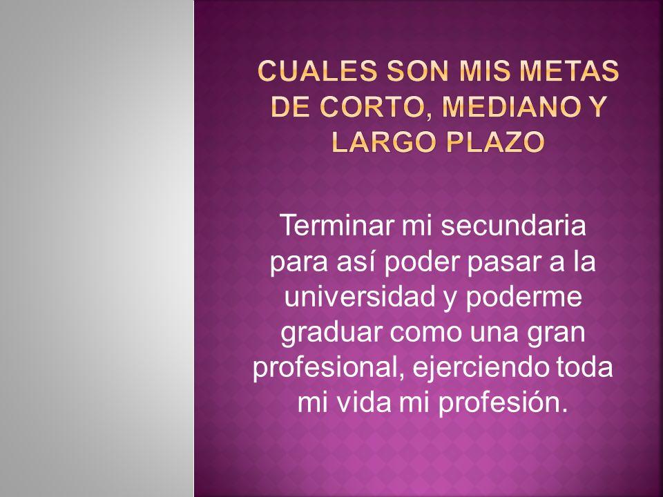 CUALES SON MIS METAS DE CORTO, MEDIANO Y LARGO PLAZO