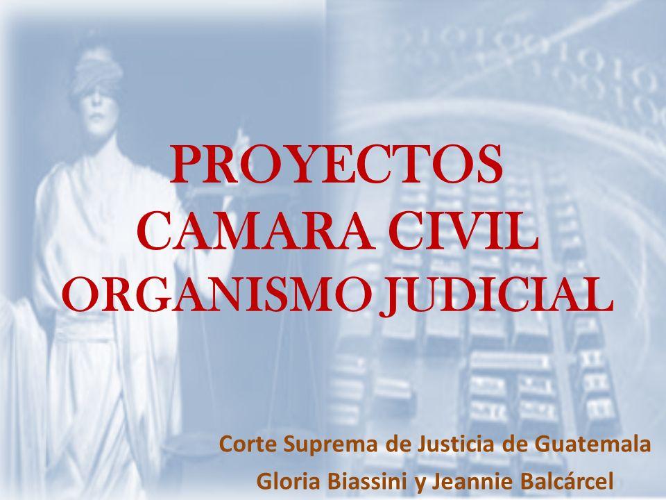 PROYECTOS CAMARA CIVIL ORGANISMO JUDICIAL