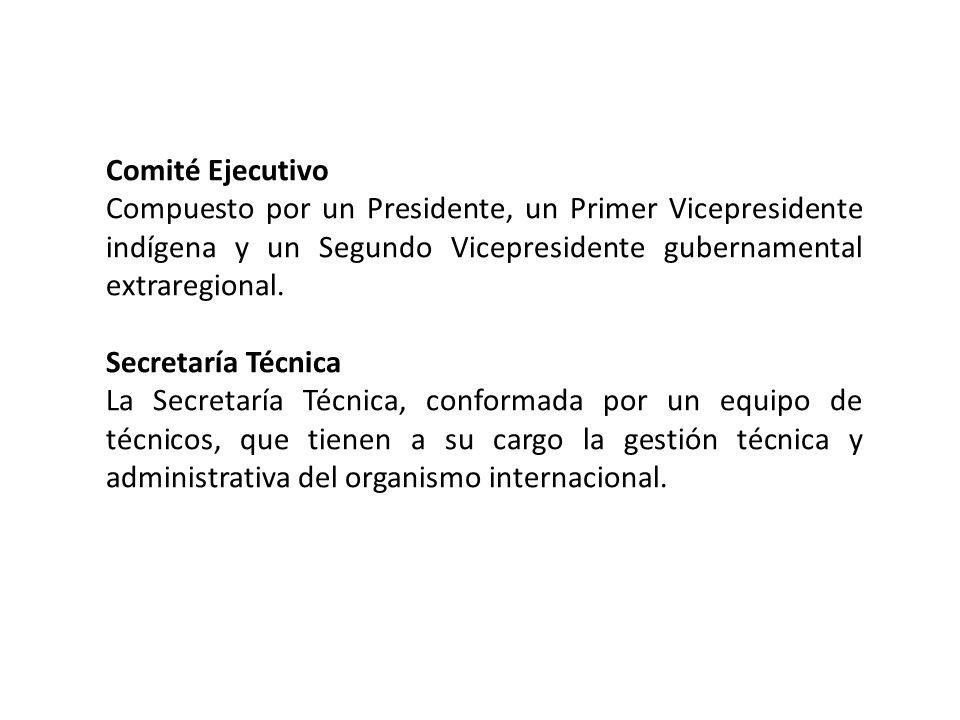 Comité EjecutivoCompuesto por un Presidente, un Primer Vicepresidente indígena y un Segundo Vicepresidente gubernamental extraregional.
