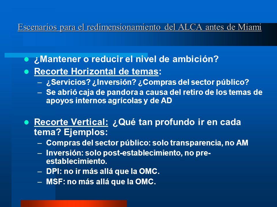 Escenarios para el redimensionamiento del ALCA antes de Miami