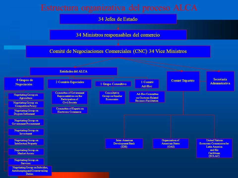 Estructura organizativa del proceso ALCA