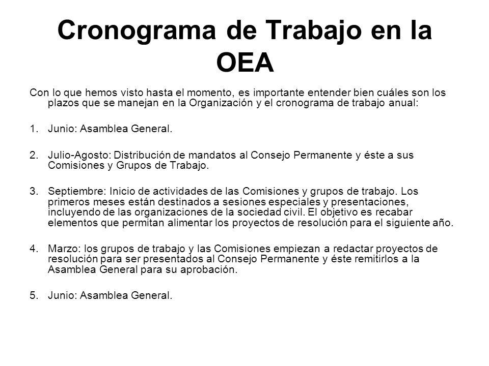 Cronograma de Trabajo en la OEA