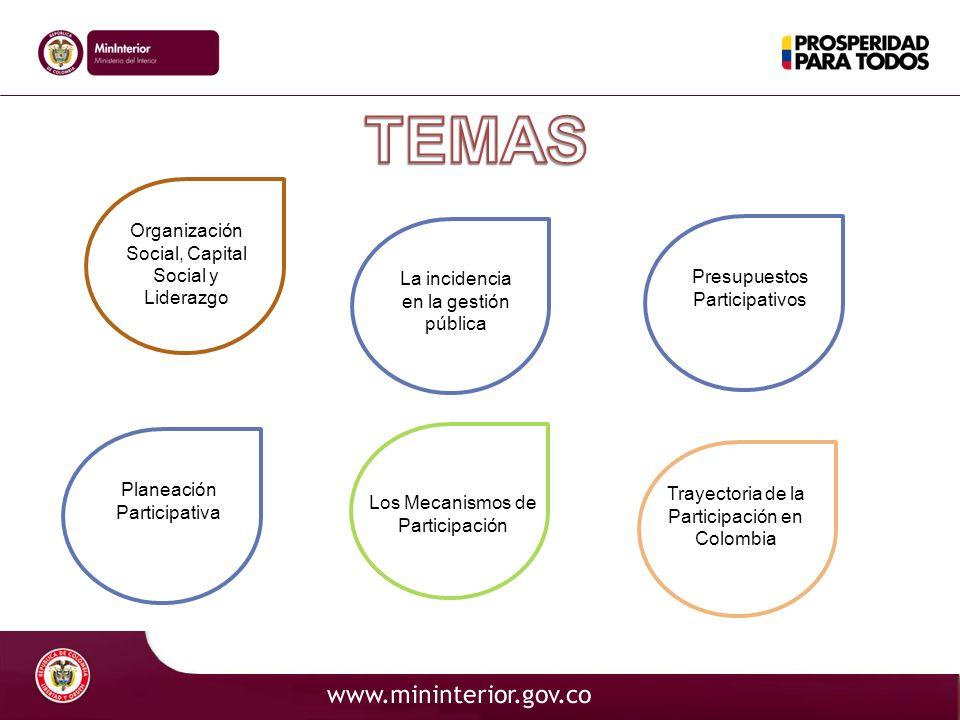 TEMAS Organización Social, Capital Social y Liderazgo
