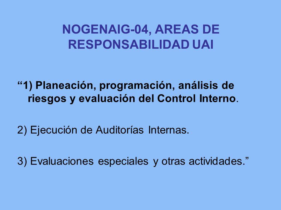 NOGENAIG-04, AREAS DE RESPONSABILIDAD UAI