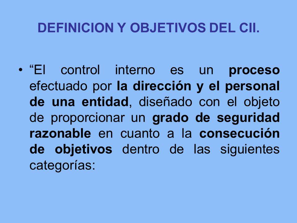 DEFINICION Y OBJETIVOS DEL CII.
