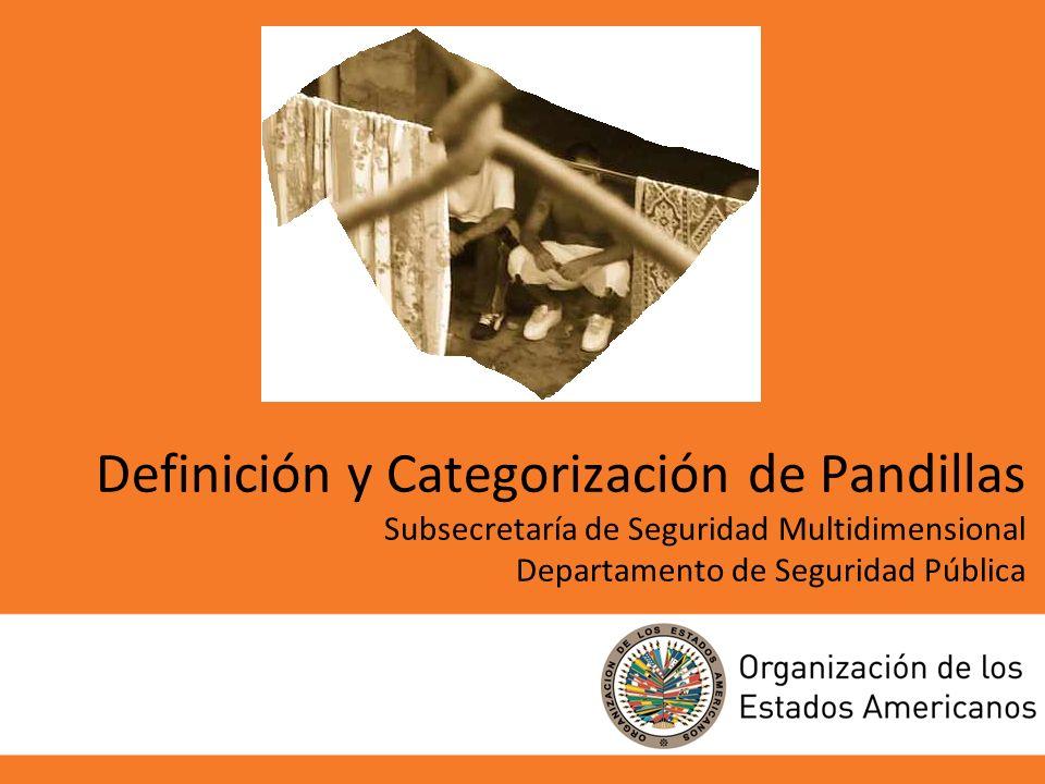Definición y Categorización de Pandillas Subsecretaría de Seguridad Multidimensional Departamento de Seguridad Pública