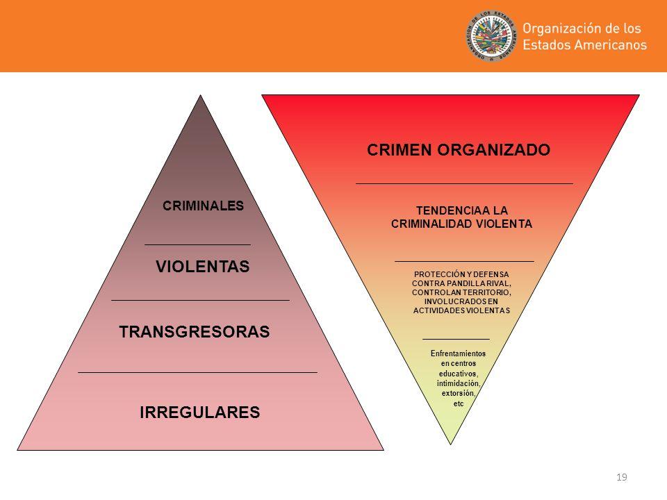 CRIMEN ORGANIZADO VIOLENTAS IRREGULARES